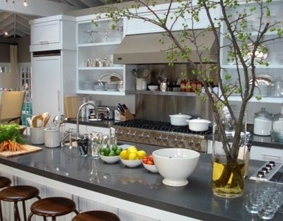 Ina Garten Kitchen Countertop Design Ideas